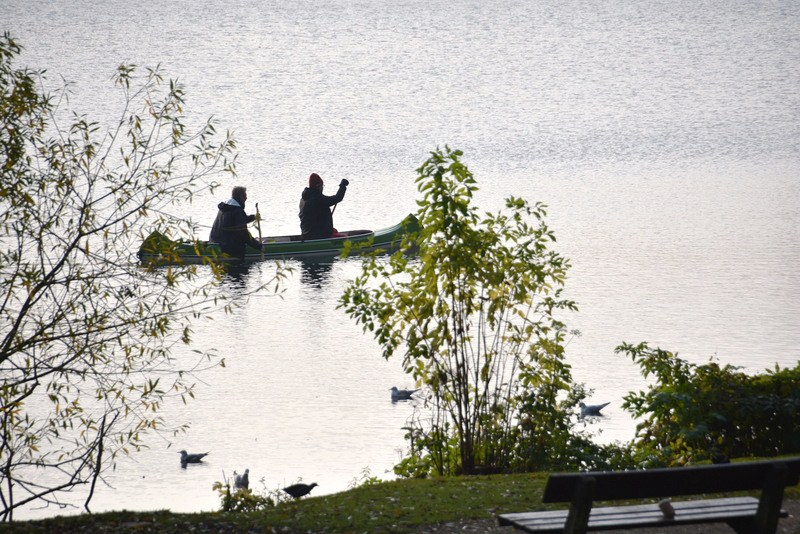 Kanuten auf dem Wasser